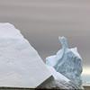 1345 - Detaille Island - 2011-02-21 - P1070085