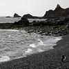 0281 - Half Moon Island - 2011-02-19 - P1050773