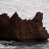 1652 - Deception Island - 2011-02-23 - P1070413