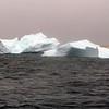 1465 - Penola Strait-Booth Island - 2011-02-22 - P1010799