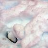 1240 - Detaille Island - 2011-02-21 - P1060858