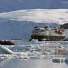 0466 - Neko Harbour - 2011-02-20 - P1050938