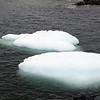1283 - Detaille Island - 2011-02-21 - P1060840