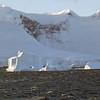 1509 - Gerlache Strait - 2011-02-22 - P1010857