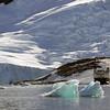 0465 - Neko Harbour - 2011-02-20 - P1050940