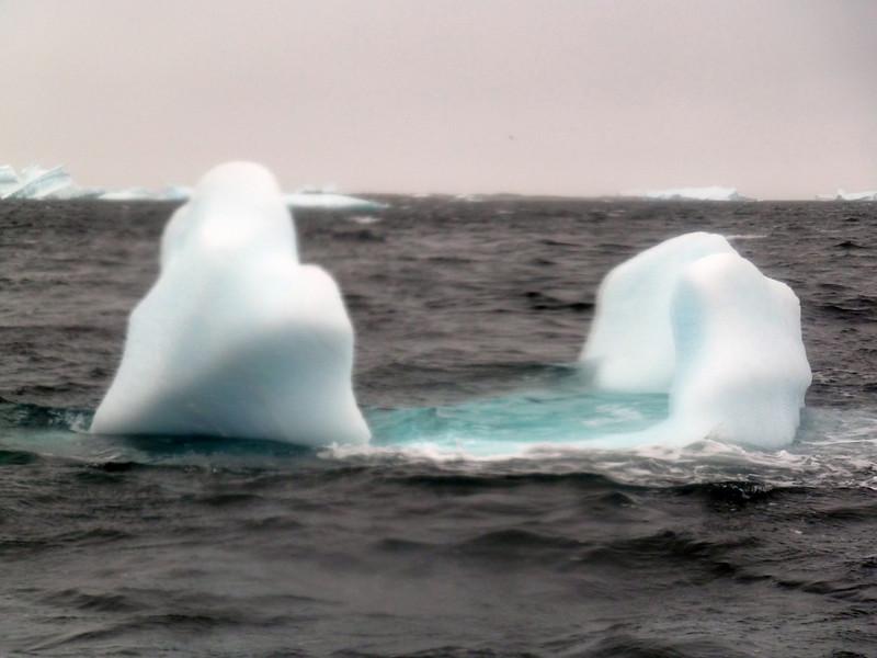 1490 - Penola Strait-Booth Island - 2011-02-22 - P1010831