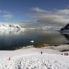 0535 - Neko Harbour - 2011-02-20 - P1060042