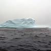 1424 - Penola Strait-Booth Island - 2011-02-22 - P1010746