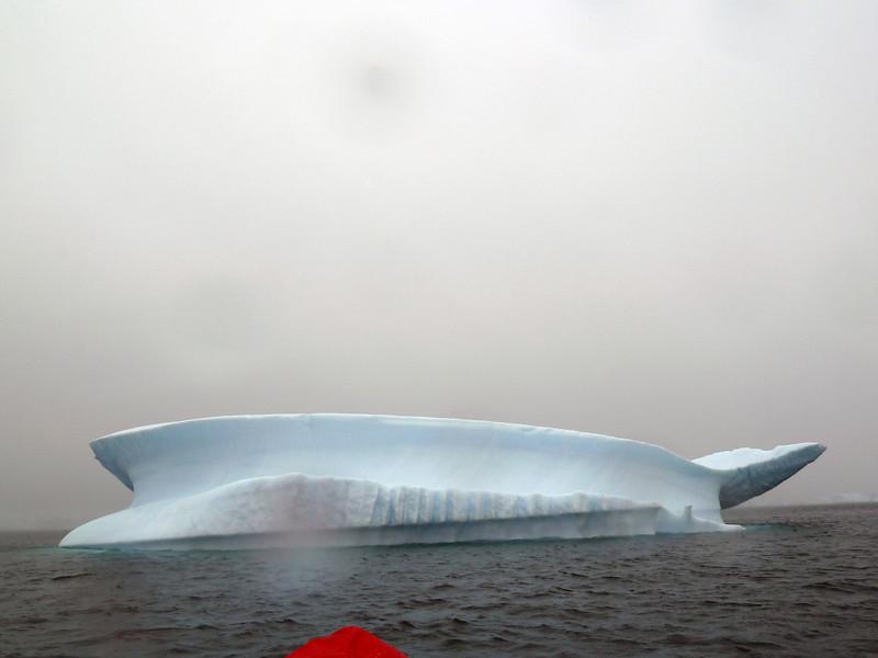 1420 - Penola Strait-Booth Island - 2011-02-22 - P1010740