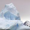 1363 - Detaille Island - 2011-02-21 - P1070115