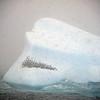 0353 - At Sea - 2011-02-19 - P1050847
