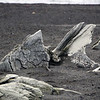 1690 - Deception Island - 2011-02-23 - P1070468