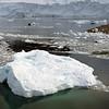 0473 - Neko Harbour - 2011-02-20 - P1050899