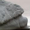 1392 - Detaille Island - 2011-02-21 - P1070172