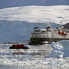 0468 - Neko Harbour - 2011-02-20 - P1050939