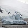 1254 - Detaille Island - 2011-02-21 - P1060937