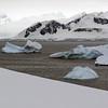 1248 - Detaille Island - 2011-02-21 - P1060928