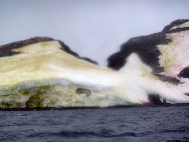 1496 - Penola Strait-Booth Island - 2011-02-22 - P1010841