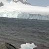 0245 - Half Moon Island - 2011-02-19 - P1050720