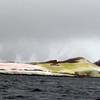 1493 - Penola Strait-Booth Island - 2011-02-22 - P1010834
