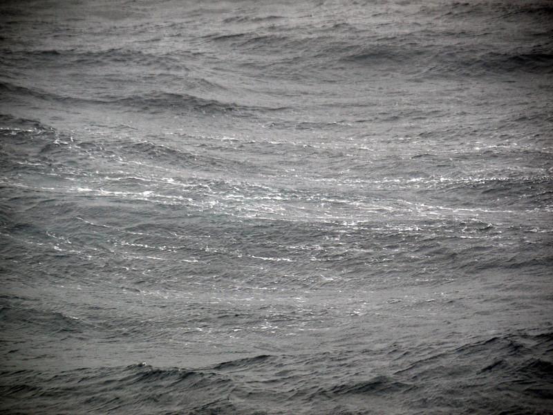 1762 - At Sea - 2011-02-24 - P1070569