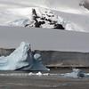 0583 - Neko Harbour - 2011-02-20 - P1060112