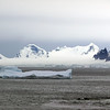 1258 - Detaille Island - 2011-02-21 - P1060946