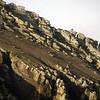 1529 - Deception Island - 2011-02-23 - P1070200