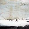 1322 - Detaille Island - 2011-02-21 - P1070041