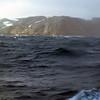 0135 - Half Moon Island - 2011-02-19 - P1010587
