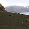 1661 - Deception Island - 2011-02-23 - P1070419