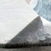 1361 - Detaille Island - 2011-02-21 - P1070110