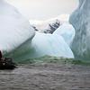 1356 - Detaille Island - 2011-02-21 - P1070100