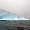 1447 - Penola Strait-Booth Island - 2011-02-22 - P1010775