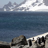0259 - Half Moon Island - 2011-02-19 - P1050744