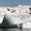 0460 - Neko Harbour - 2011-02-20 - P1050985