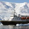0470 - Neko Harbour - 2011-02-20 - P1050990