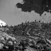 0601 - Cuverville Island - 2011-02-20 - P1060285