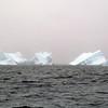 1427 - Penola Strait-Booth Island - 2011-02-22 - P1010752