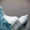 1357 - Detaille Island - 2011-02-21 - P1070101