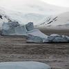 1250 - Detaille Island - 2011-02-21 - P1060931