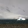 0236 - Half Moon Island - 2011-02-19 - P1050711
