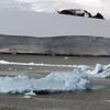 0580 - Neko Harbour - 2011-02-20 - P1060108