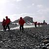 0176 - Half Moon Island - 2011-02-19 - P1050672
