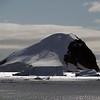 0573 - Neko Harbour - 2011-02-20 - P1060101