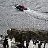 0251 - Half Moon Island - 2011-02-19 - P1050735