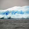 1338 - Detaille Island - 2011-02-21 - P1070077