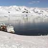 0532 - Neko Harbour - 2011-02-20 - P1060036