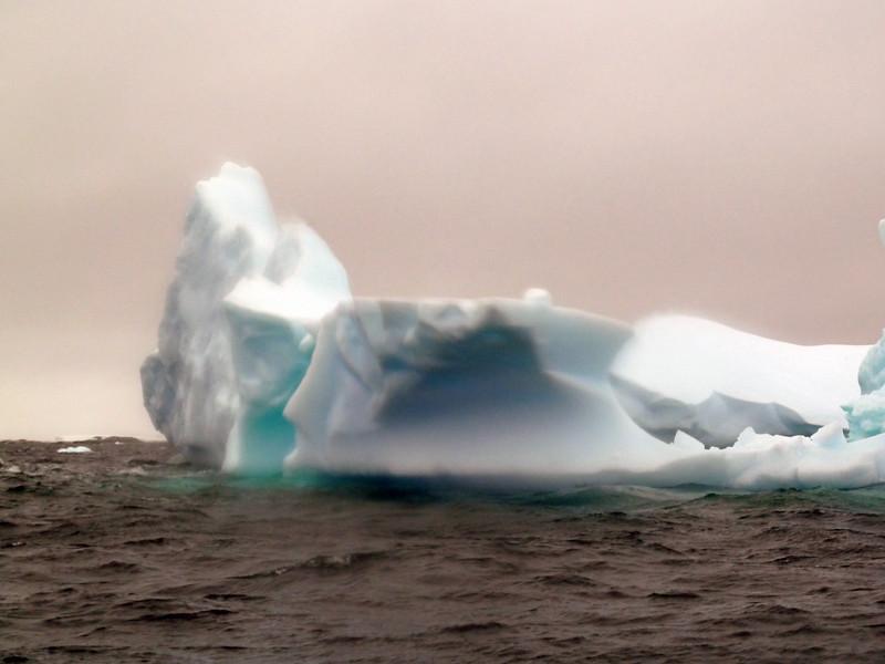 1471 - Penola Strait-Booth Island - 2011-02-22 - P1010808