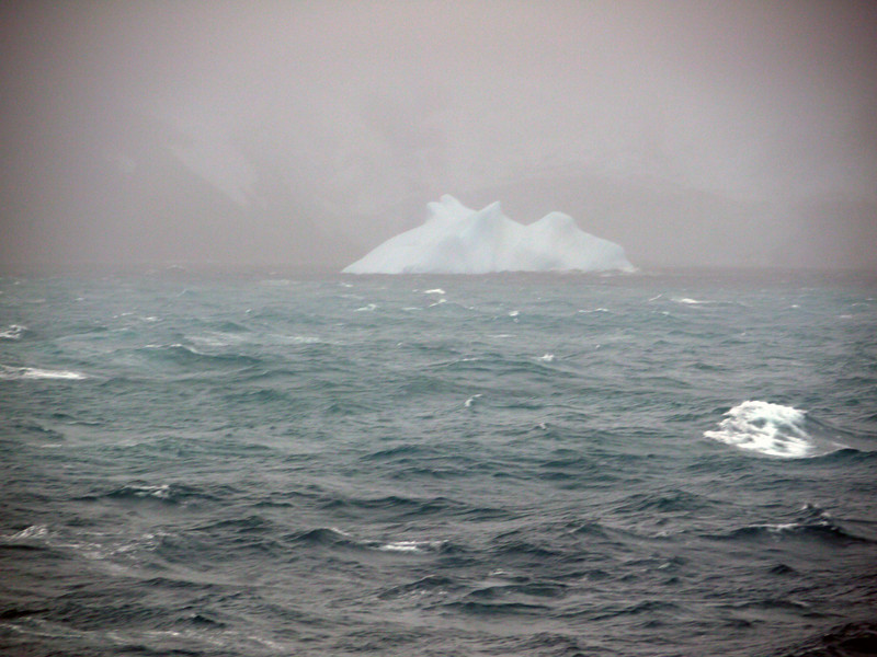 1757 - Elephant Island - 2011-02-24 - P1070557